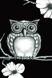 Fictional Owl- pencil/ink/digital