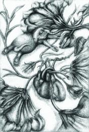 Hybernation Vine-Bearlephant- Pencil